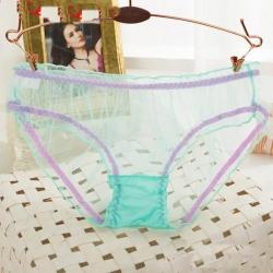 Transparent Seamless Net yarn Lace Underwear  Panties