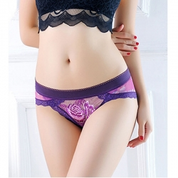 Lace Transparent Embroidery Breathable Sexy Panty