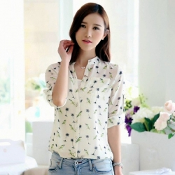 Korean Style Women Long Sleeve Chiffon Shirt