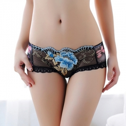 Floral Transparent Embroidery Sexy Lace Shorts Panty